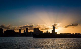 Rotterdam Trouwen